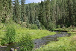 West Fork Trail #628 - Black River