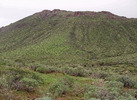 photo thumbnail #4
