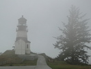 Cape Disappointment State Park Trail