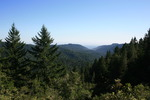 McAbee Mountain - Big Basin