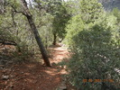 Casner Canyon Trail #11