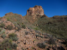 Buzzards Roost - SW Superstitions