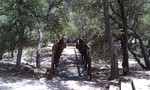 Cochise Stronghold Nature Trail
