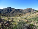 Little Granite Mountain 4214 - Tonto NF