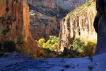 Aravaipa Canyon Wilderness - GET #7