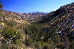 Sabino Canyon to Catalina State Park
