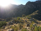 Buster Canyon Loop - Tucson