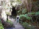 Thurston Lava Tube Trail
