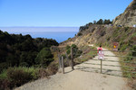 Partington Cove Trail - Big Sur Coastline