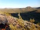 Dixie Mountain Loop - Sonoran Preserve