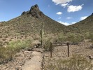 Calloway Trail - Picacho State Park