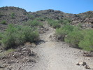 Devastator Trail - South Mountain
