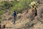 Sonoran Trail - MMRP
