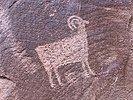 Kane Spring Road Rock Art