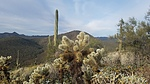 Cholla Mountain - Hieroglyphic Mountains