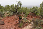 Canyon Rim Trail - Caprock